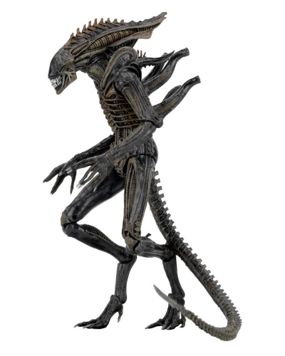 Aliens Serie 11 Set (3) Actionfiguren 18-23 cm
