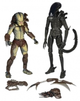 Aliens vs. Predator Actionfiguren Doppelpack 18 cm